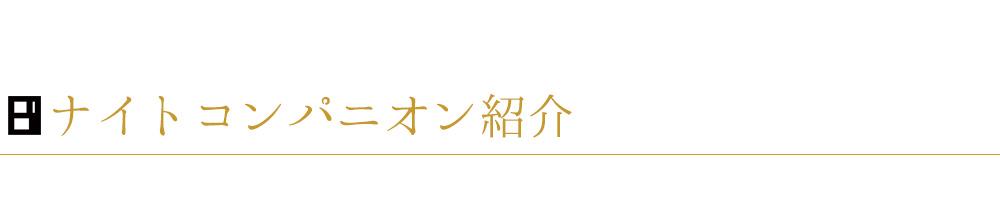ナイトコンパニオン紹介